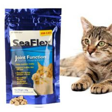 Seaflex Cat Kibble