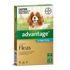 Advantage Aqua for Medium Dogs 4-10kg - 4 Pack