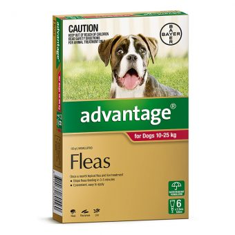 Advantage Red for Large Dogs 10-25kg - 6 Pack