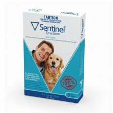 sentinel-spectrum-blue-large-dogs-22-45kg-3pk