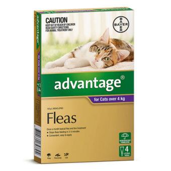 advantage-cats-over-4kg-4-pack