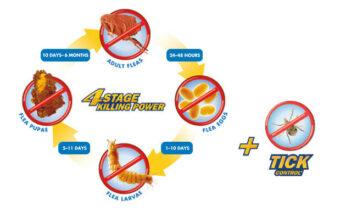 4-stage-flea-killing-power-incliding-tick