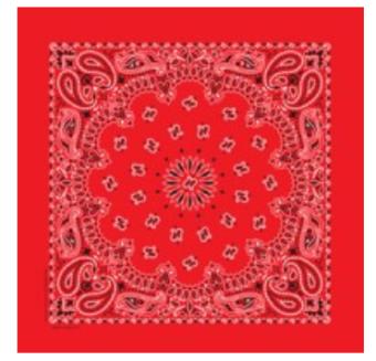 Paisley Bandanas – Mixed Packs-1