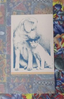 sympathy-card-dog-and-cat