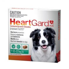 heartgard-plus-chew-for-medium-dog-green-6pk