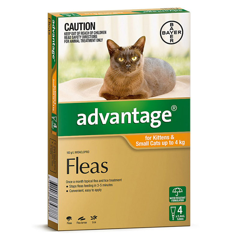 Image of Advantage Orange for Small Cats & Kittens 0-4kg - 4 Pack