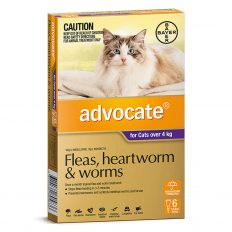 advocate-large-cats-over-4kg-6-pack