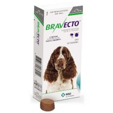Bravecto Chew For Dogs 10kg - 20kg