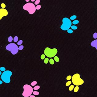 Stylist-Wear-satin-nylon-multi-clour-paws-on-black