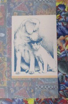 sympathy-card-dog-and-cat