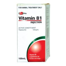 Value Plus Vitamin B1 Injection 100ml